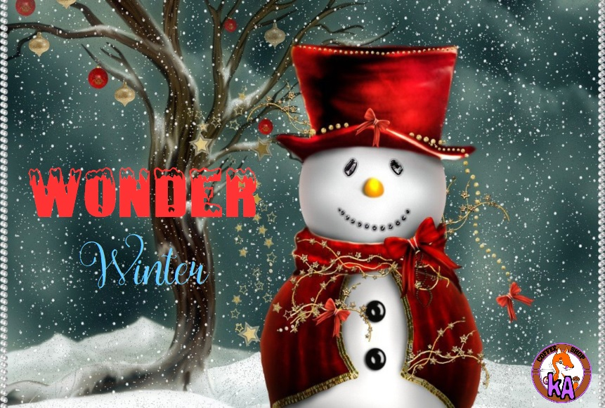 Wonder Winter